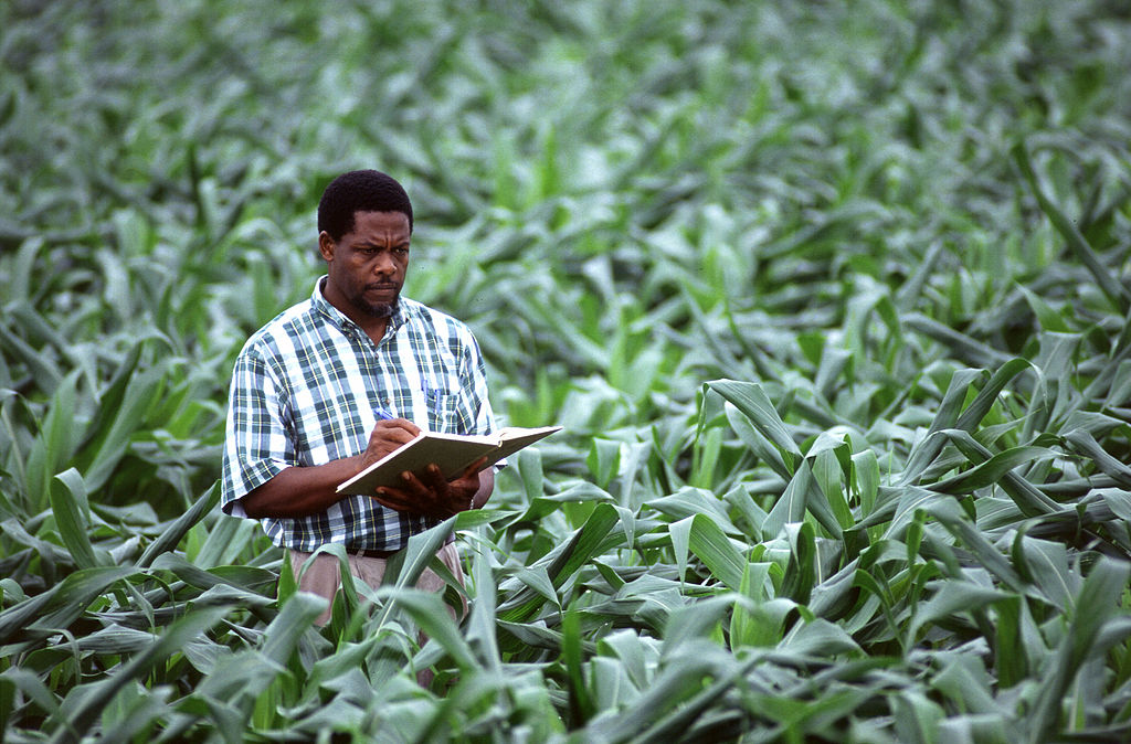 Open data brings farmers and researchers together