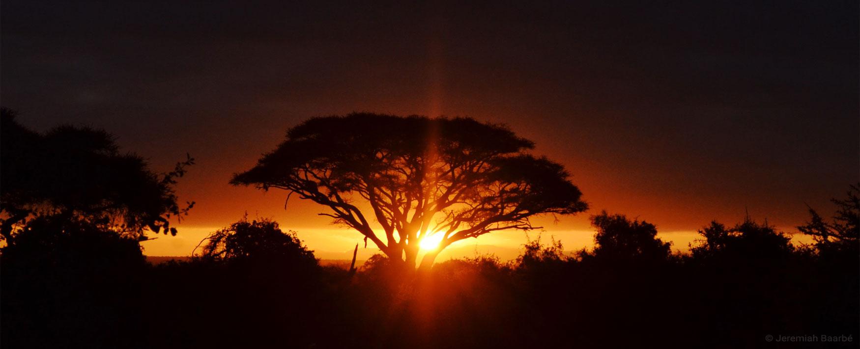 The sun rising above Amboseli, Kenya